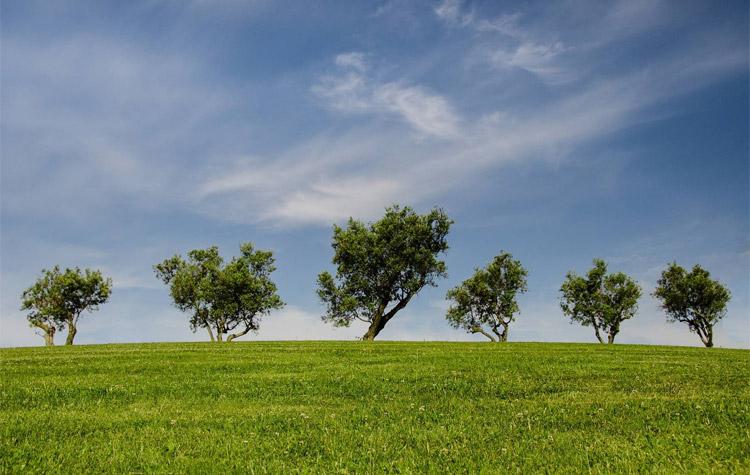 Climatización Ecológica
